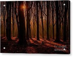 Lights And Shadows Acrylic Print