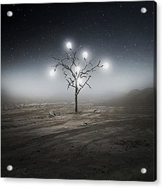 Lights Out Acrylic Print by Zoltan Toth