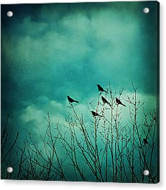 Acrylic Print featuring the photograph Like Birds On Trees by Trish Mistric