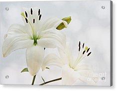 White Lilith Acrylic Print