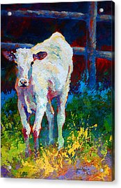 Like My Daddy Acrylic Print by Marion Rose