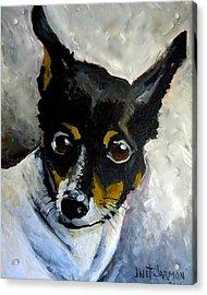 Lil Rat Terrier Acrylic Print
