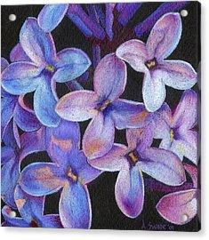 Lilac 3 Acrylic Print by Audi Swope
