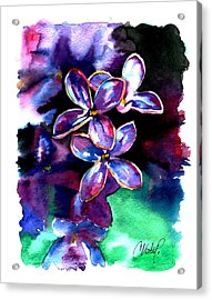 Lilac Blossom Acrylic Print by Christy  Freeman
