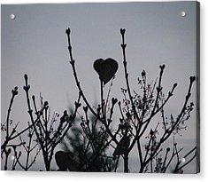 Acrylic Print featuring the photograph Lilac Heart by Judyann Matthews