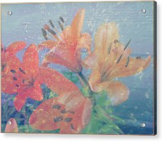 Lilies #1 Acrylic Print