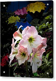 Lilies And Glass Acrylic Print by Stephen Mack