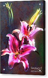 Lilies At Night Acrylic Print