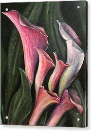 Lilies Calla Oil Painting Acrylic Print by Natalja Picugina
