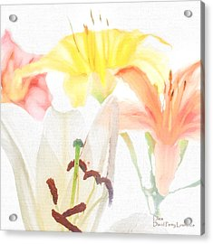 Acrylic Print featuring the photograph Lilies by David Perry Lawrence