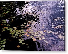 Acrylic Print featuring the photograph Lilies In The Water by Lyle Crump
