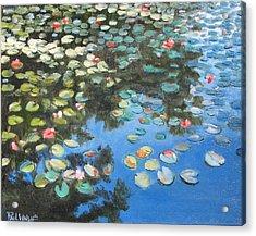 Lilies Acrylic Print by Paul Walsh