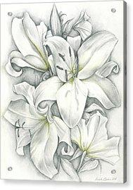 Lilies Pencil Acrylic Print