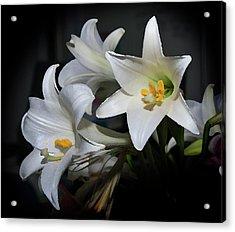 Lillies Acrylic Print by Odille Esmonde-Morgan