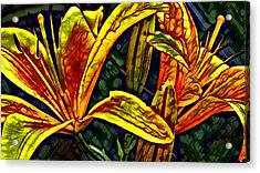 Lilly Fire Acrylic Print