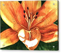 Acrylic Print featuring the painting Lilly Of The Garden by Sharon Mick