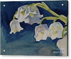Lilly Of The Valley Acrylic Print by Gretchen Bjornson