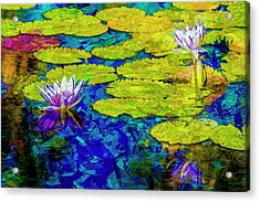 Acrylic Print featuring the photograph Lilly by Paul Wear