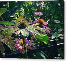 Lil's Garden Acrylic Print
