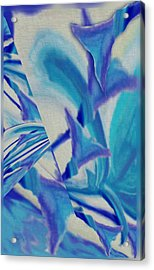 Lily Abstract #1 Acrylic Print