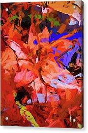 Lily Cobalt Orange Acrylic Print