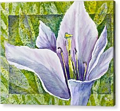Lily In Purple Acrylic Print