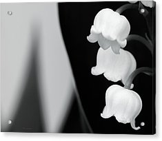Lily Of The Valley Abstract Acrylic Print
