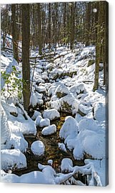 Lily Pads Of Snow Acrylic Print