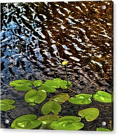 Acrylic Print featuring the photograph Lily Pads On First Lake by David Patterson
