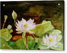The Lily Pond - Painting  Acrylic Print