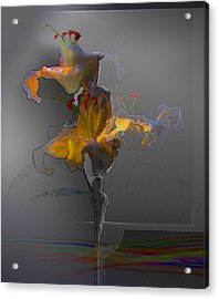 Acrylic Print featuring the photograph Lily Variation 09 by Richard Wiggins