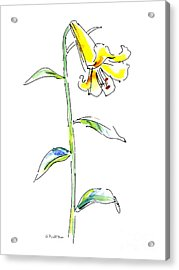 Lily Watercolor Painting 2 Acrylic Print