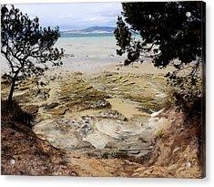 Lime Bay Tasmania 5 Acrylic Print