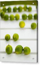 Lime Green Acrylic Print by Skip Hunt