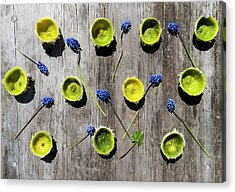 Limes Were Delicious Acrylic Print