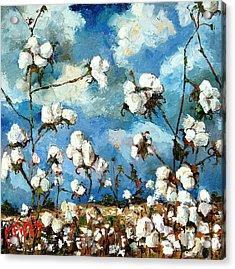 Limestone County Cotton Acrylic Print by Carole Foret