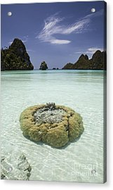 Limestone Islands Surround Corals Acrylic Print by Ethan Daniels