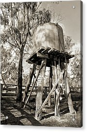 Acrylic Print featuring the photograph Limited Water Supply by Linda Lees