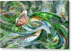 Limpkin Studying Time Flow Acrylic Print