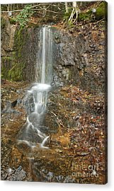 Lincoln Woods - White Mountains New Hampshire Usa Acrylic Print