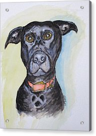 Linda's Doggie Acrylic Print by Clyde J Kell