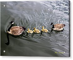 Line Astern Signed Acrylic Print