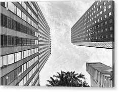 Acrylic Print featuring the photograph Lines All The Way Up by Lora Lee Chapman