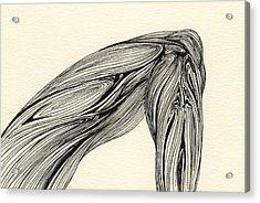 Lines - #ss13dw002 Acrylic Print by Satomi Sugimoto