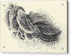 Lines - #ss13dw018 Acrylic Print by Satomi Sugimoto