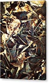 Lingering Foliage Acrylic Print