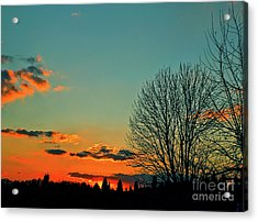Acrylic Print featuring the photograph Linvilla Sunset by Sandy Moulder