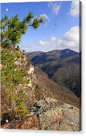 Linville Gorge Acrylic Print by Alan Lenk