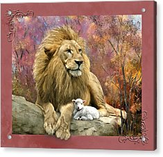 Lion And The Lamb Acrylic Print