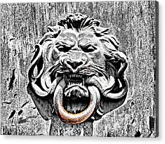 Lion And The Snake Acrylic Print by Greg Sharpe